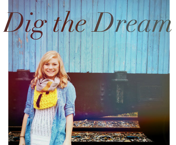 dig the dream